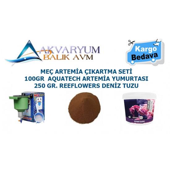 Artemia Çıkartma Seti + 100gr Artemia Yumurtası + Deniz Tuzu ÜCRETSİZ KARGO