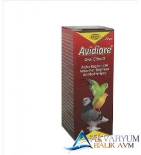 Biyoteknik Avi-Diar Kuş Bağırsak Antibakteriyal
