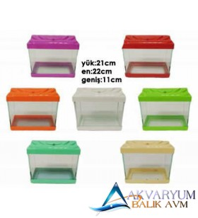 Mini Akvaryum 23x20x12