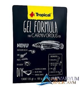 Tropical Gel Formula Carnivorous 35gr Etçil